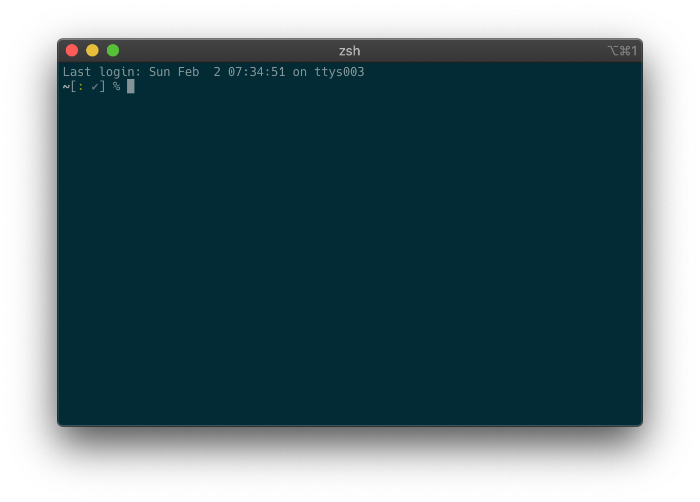 Screenshot of the iTerm terminal emulator with zsh prompt