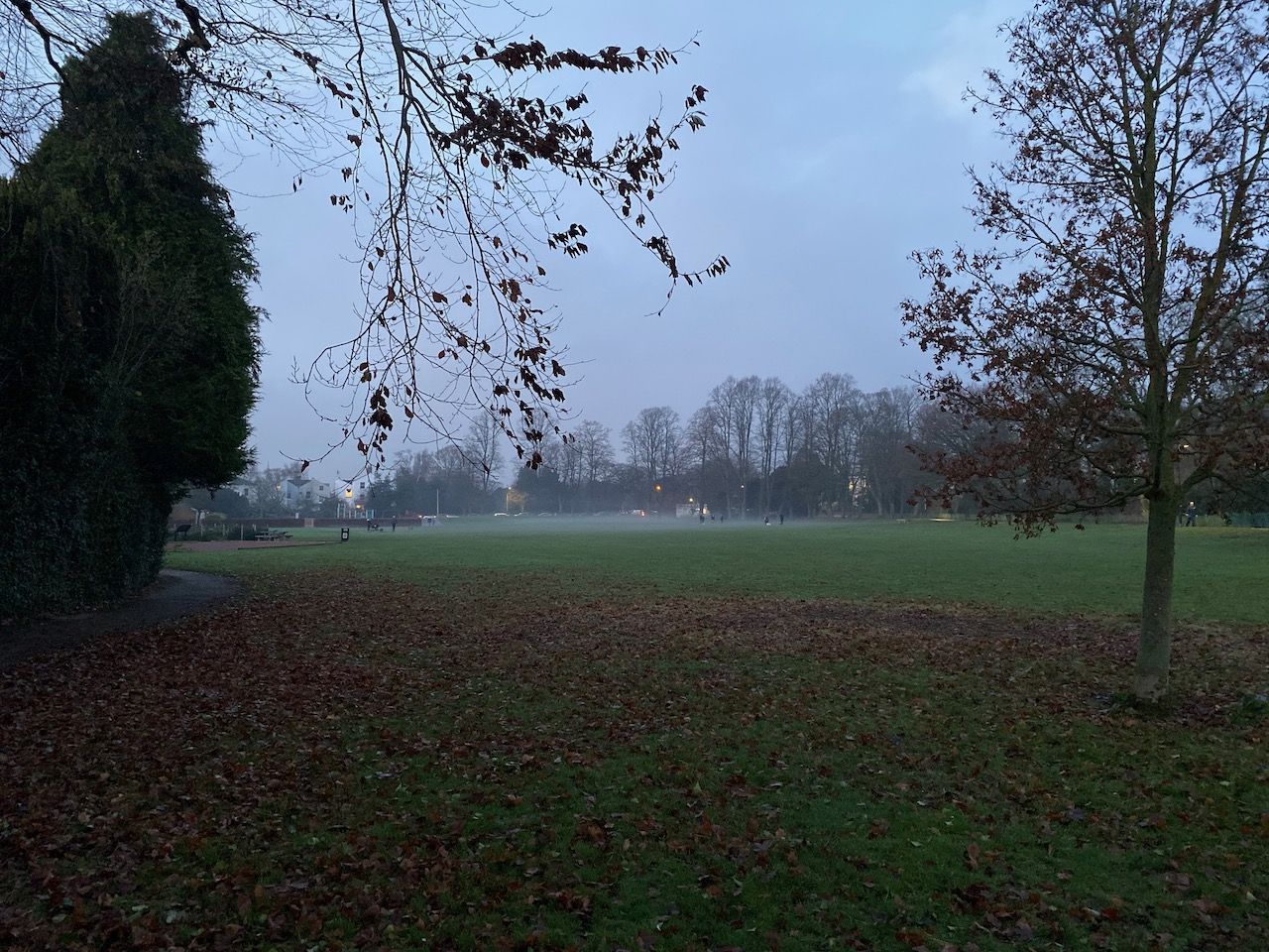 Sandford Park with low lying fog